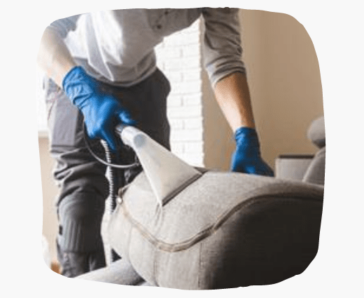 Upholstery Cleaning Brunswick